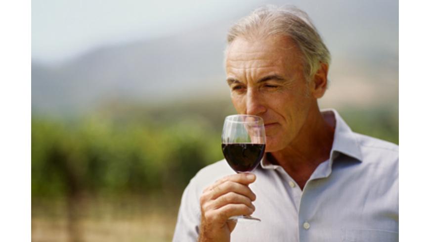 Weinbergführung mit Weinverkostung bei Ludwigsburg