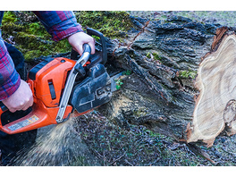 Holzfäller-Kurs mit Kettensaegenschein