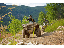 Quad On- & Offroad Tour